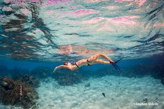 Our amazing Bora Bora photo lagoon tour and motu Polynesian picnic lunch with the talented underwater photographer from Bora Bora Photo Video. Bora Bora Activities, Bora Bora Photos, Underwater Photographer, Tours, Photo And Video, Summer, Summer Recipes, Summer Time, Verano