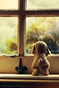When Will You Come Back? #teddy, #teddies, #bears, #toys, #pinsland, https://apps.facebook.com/yangutu