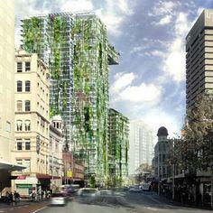 Giardini Verticali: Patrick Blanc al lavoro per costruire a Sidney il più grande del mondo