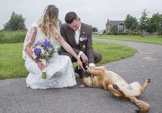 www.Trouwgeheimen.nl/trouwfotos-met-hond/ Wedding Dresses, Fashion, Bride Dresses, Moda, Bridal Gowns, Fashion Styles, Weeding Dresses, Wedding Dressses, Bridal Dresses