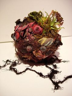 Amy Gross,  Little stitched and paper biotope