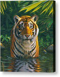 Piscina Tiger lienzo de la lámina MGL Estudio - Chris Hiett