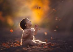 Ashton by Lisa Holloway