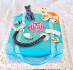 Veterinary cake - Buttercream iced cake with modeling chocolate animals