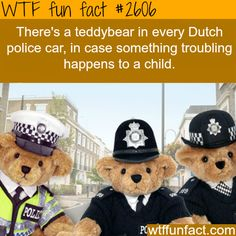 Teddybears in Dutch Police cars - WTF fun facts-I live in Holland and seriously, this isn't true. I'd wish