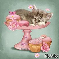 Kitty & The Cupcakes Animals And Pets, Baby Animals, Cute Animals, Kittens Cutest, Cats And Kittens, Kitten Images, Cat Cards, Cat Drawing, Cat Gif