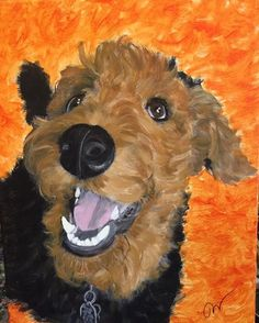 By Jamie Liebau-Olsen Irish Terrier, Airedale Terrier, Fox Terrier, Animals And Pets, Cute Animals, Silly Dogs, Large Dog Breeds, Animal Sketches, Watercolor Animals
