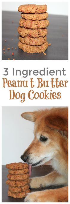 My dog LOVES these cookies!