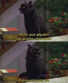 sabrina, the teenage witch. Salem Sabrina, Salem Cat, Im A Loser, Himym, Sad Girl, Sad Love, Movie Quotes, Kawaii Anime, Mood