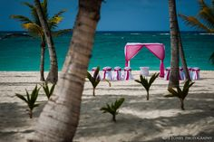 Palace Bavaro Wedding