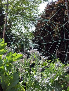 love this idea!! plant any pole climbing plant to grow up your spider web.