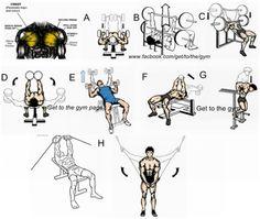 chest program