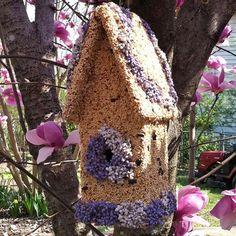 Birdseed Birdhouse....
