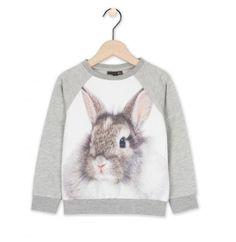 Sweater met konijn - JBC Webshop BE - NL