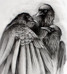 The Gathering -  Giclee Print from original charcoal drawing by Lauren Gray