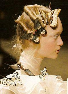 Let the butterflies stay in your hair. Gemma Ward at Alexander McQueen Fall Alexandre Mcqueen, Givenchy, Gemma Ward, Butterfly Hair, Spring Hairstyles, Hair Art, Fall Hair, Headpiece, Fashion Show