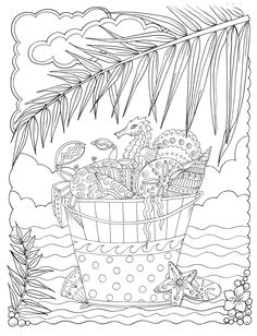 Relaxing Shells to Color Away the Worries of the Day by Artist Deborah Muller Spiral Bound, Single Sided, Printed on Cardstock Beach Coloring Pages, Coloring Book Pages, Coloring Sheets, Coloring Stuff, Amazon Coloring Books, Online Coloring, Chat Halloween, Henna Style, Art Original