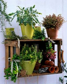 WABI SABI - simple, organic living from a Scandinavian Perspective.: DIY: Simple pallet storage for herbs Rooftop Garden, Balcony Garden, Herb Garden, Indoor Garden, Garden Art, Indoor Plants, Outdoor Gardens, Garden Design, Home And Garden