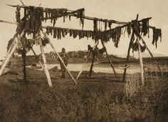 Drying Whale Meat - Hooper Bay (The North American Indian, v. XX. Norwood, MA, The Plimpton Press,  1930) by Edward Sheriff Curtis from University of Southern California Libraries