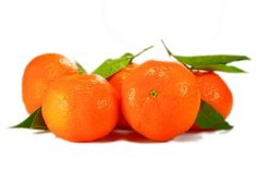 ❕ Get this free picture Leaves oranges fruit citrus fruit    ✅ https://avopix.com/photo/40864-leaves-oranges-fruit-citrus-fruit    #tomato #vegetable #food #pepper #sweet pepper #avopix #free #photos #public #domain