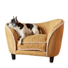 Enchanted Home Pet Ultra Plush Snuggle Bed in Chestnut - BedBathandBeyond.com