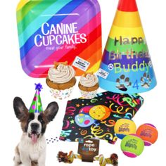 Great Selection of Birthday Gifts and Toys for Dogs. Make Your Dogs Birthday a Special Day With Our Fun Gift Baskets. Birthday Dog Treats, Birthday Cake Gift, Dog Toy Storage, Toy Storage Boxes, Dog Toys, Special Day, Dog Food Recipes, Best Gifts, Make It Yourself