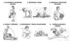 6 EJERCICIOS PARA ESTIMULAR LOS DOCE MERIDIANOS