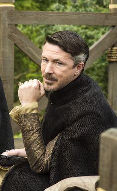 Aidan Gillen as Littlefinger
