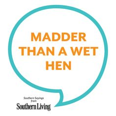 How we say someone's mad down south♡ Southern Words, Southern Phrases, Southern Ladies, Southern Pride, Southern Comfort, Southern Charm, Southern Belle, Southern Hospitality, Southern Living