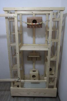 Extra tall wooden chinchilla cage with lots of ledges and hideouts.