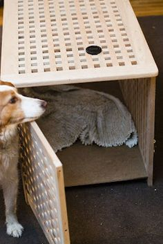 1000 Images About Mud Room On Pinterest Dog Kennels