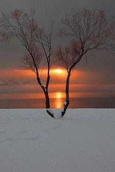 "Winter's beauty, Okanagan Lake, Canada.""..........."