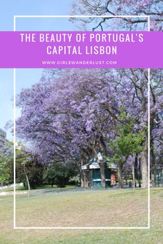 The Beauty of Porugal's capital Lisbon!  https://girlswanderlust.com/2015/11/26/the-beauty-of-portugals-capital-lisbon/