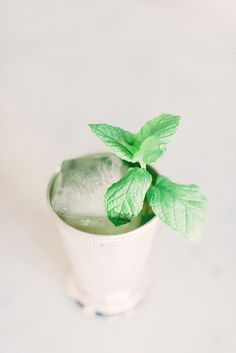 mint julep recipe for race day