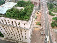 Telhados Verdes   Larissa Carbone Arquitetura