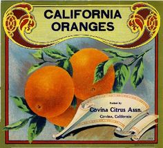 Covina Los Angeles County California Orange Citrus Fruit Crate Label Art Print | eBay