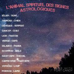 Source by monteva Zodiac Funny, Zodiac Memes, Scorpio Zodiac, Astrology Zodiac, Astrology Signs, Gemini, Funny Fun Facts, Funny Memes, Tarot