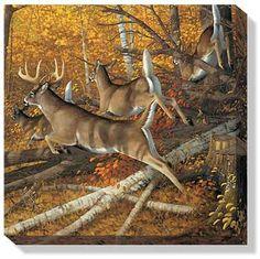 leaping deer | Maple Rush-Deer Wrapped Canvas by Sieve | Wild Wings