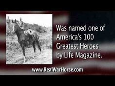 Real War Horse - Sgt. Reckless