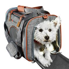 Ess And Craft Pet Carrier Airline Approved | Side Loaded Travel Bag With Sturdy Bottom & Fleece Cushion | Ventilated Pouch With Faux Leather Top Handle & Zipper Locks | For Dogs Cats & Small Pets