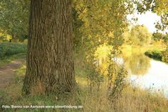 Mehr Ideen durch Freiraum - der Herbst inspiriert!