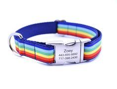 Cabana Stripe Dog Collar with Laser Engraved Personalized Buckle - RAI – Bark Label