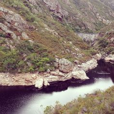Fernkloof Nature Reserve, Hermanus Morning hike #latergram Nature Reserve, Places To Travel, South Africa, Grand Canyon, Followers, Cape, Southern, Hiking, Boards