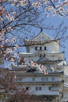 Sakura & Castle by Hirotoshi Shiozaki on 500px