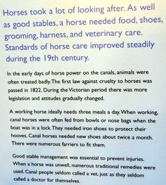 Canal Horses needed a lot of looking after. canalmuseum.org.uk ©SuziLove