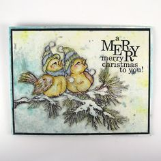 Suzz's Stamping Spot: A Merry Merry Christmas to You!; Dec 2015  #stampendous