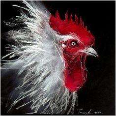 Gusztáv a fehér kakas  . Pasztell , papír 28 x 28 cm