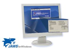 JAWS software offers a text to speech option for individuals that can not see the screen.