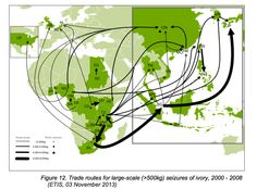 African Elephant ​ivory poaching trade routes