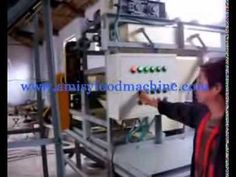 Nuts Cracking and Shelling Machine Video
